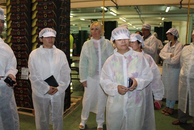 Técnicos del gobierno chino visitan las explotaciones frutícolas de Lleida