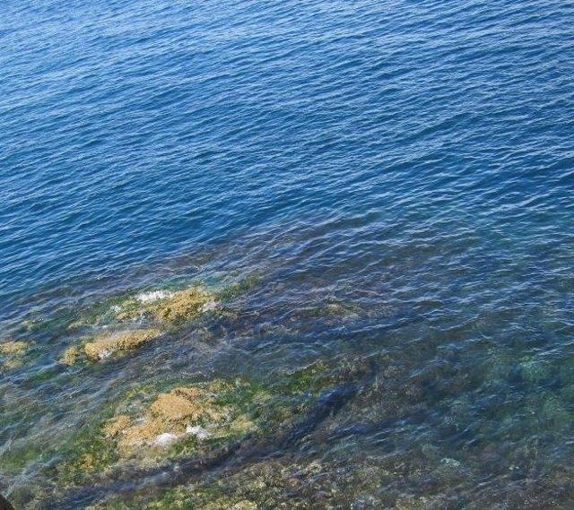 Oceáno Atlántico