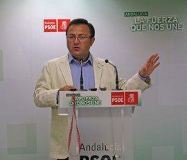 """PSOE-A dice que quien tiene que dar explicaciones sobre Ojeda es el Gobierno del PP, que """"dio 5 millones"""" al exconsejero"""