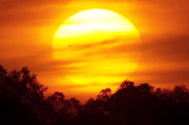 Resultado de imagen de Nacimiento del Sol