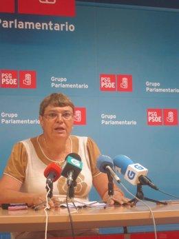 La diputada del PSdeG Marisol Soneira