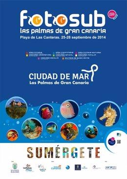 NP El Fotosub LPGC Convoca Por Primera Vez Un Concurso De Fotografía Submarina N