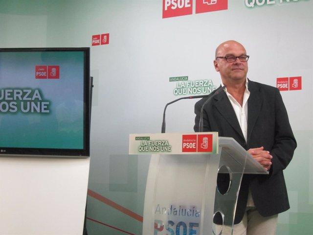 El secretario del PSOE en Jaén capital, Manuel Fernández Palomino.
