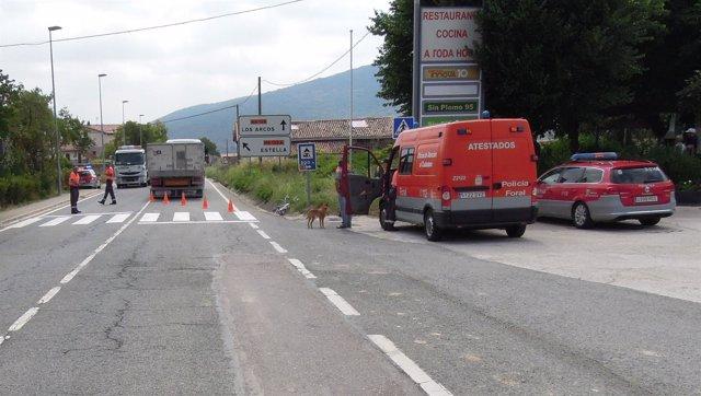 Agentes de la Policía Foral en el lugar donde se ha producido el accidente