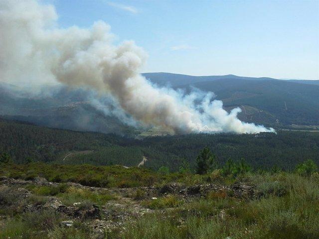 Incendio en Laza sobre las 17 horas del lunes 18 de agosto