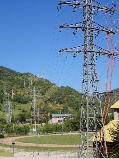 Endesa protege las aves en las líneas de la subestación del Pont de Suert (Lleida)