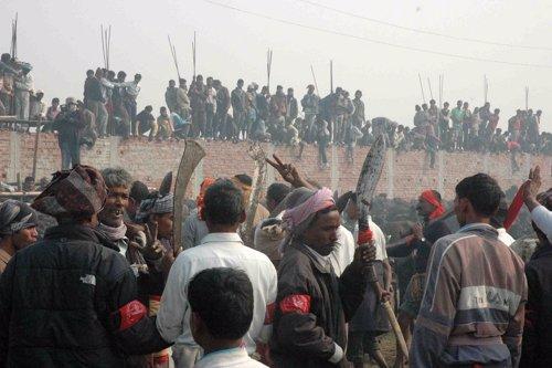 Imagen del Festival de Gadhimai