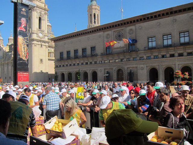 Reparto de fruta de hueso en la Plaza del Pilar por el veto ruso
