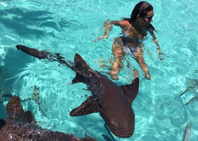 Ana Boyer, toda una chica valiente nadando entre tiburones