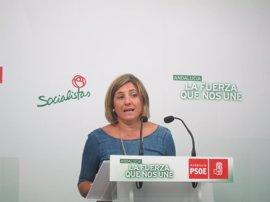 García (PSOE) reta al PP a ir a los tribunales con acusaciones por los cursos