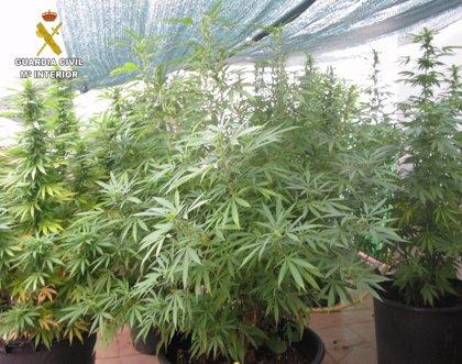 La Guardia Civil desmantela un punto de venta de droga en un domicilio de Bétera
