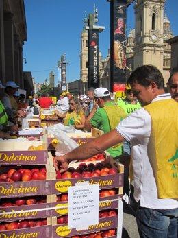 Reparto de fruta afectada por el veto ruso