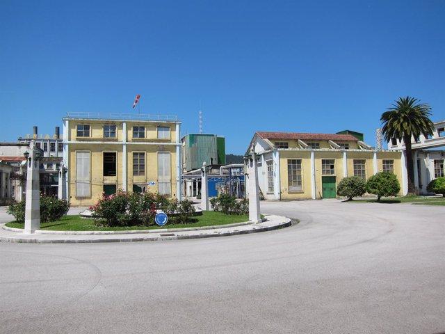 Sniace en Torrelavega