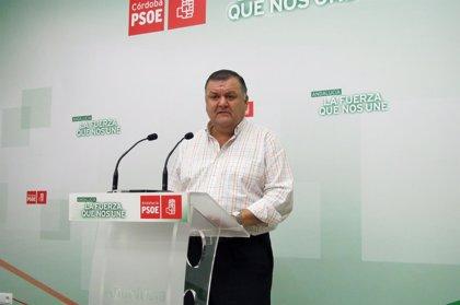 """El PSOE se moviliza contra el """"interés partidista"""" de la elección de alcaldes que plantea el PP"""