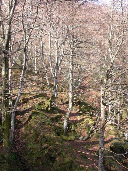 Ecologistas piden la modificación de los instrumentos de gestión de los espacios protegidos