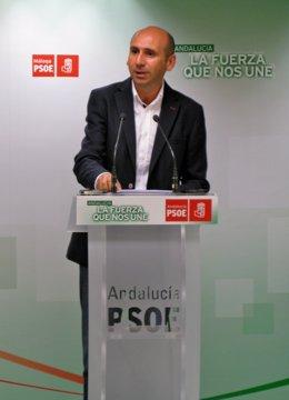Francisco Conejo, secretario de Política Institucional del PSOE-A