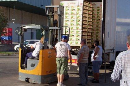 El Banco de Alimentos reparte cerca de 20.000 kilos de melocotones y nectarinas de Lleida