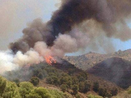 """Carnero dice al Ayuntamiento de Málaga que la Junta se dedica a """"apagar fuegos y a averiguar sus causas"""""""