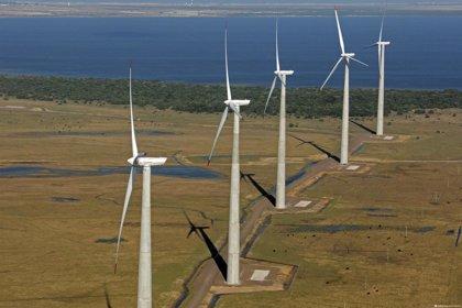 Economía/Empresas.- Acciona firma su séptimo contrato de aerogeneradores en Brasil