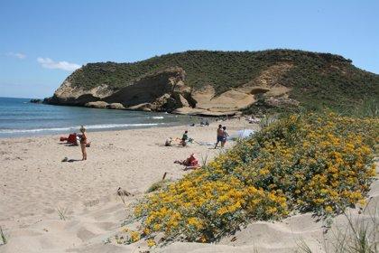 La bandera verde ondea en las playas de Murcia