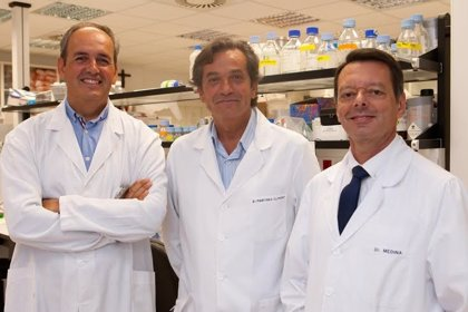 José Ángel Martínez-Climent recibe la 'Beca Roche en Onco-Hematología 2013'