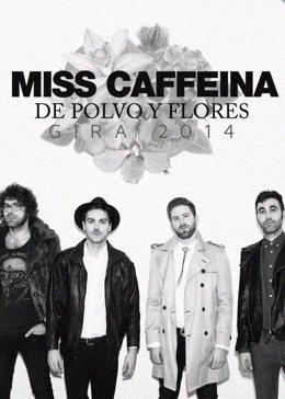 Miss Cafeína