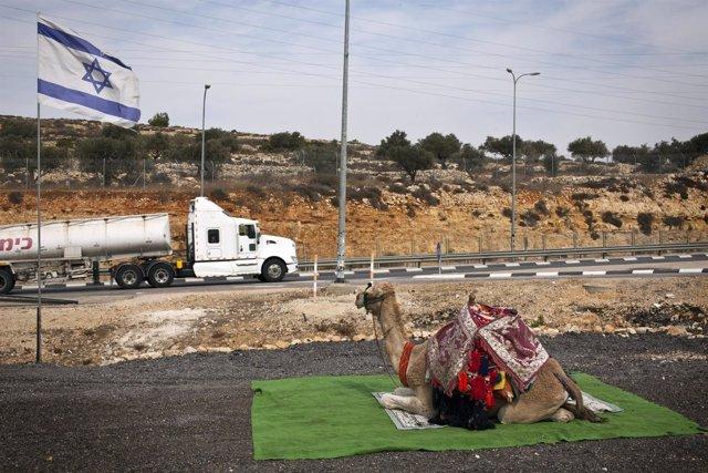 Un camello para turistas bajo la bandera israelí