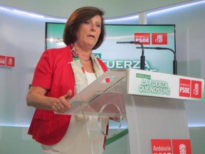 """PSOE exige al Gobierno la derogación del real decreto que """"acabó"""" con la universalidad del sistema público sanitario"""