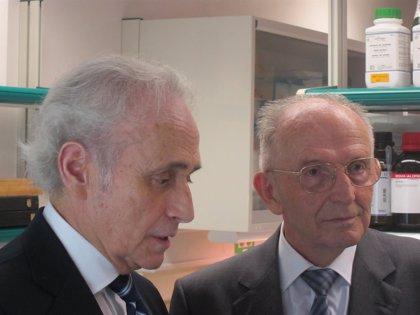 La Fundación Josep Carreras invierte 2,5 millones en unos laboratorios en el Clínic contra la leucemia
