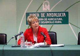 La Junta felicita al sector pesquero por la inminente vuelta a los caladeros de Marruecos