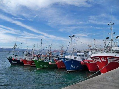 """Economía/Pesca.- El Gobierno reabre hoy la pesca de anchoa en el Cantábrico """"de manera transitoria"""" con 2.000 toneladas"""