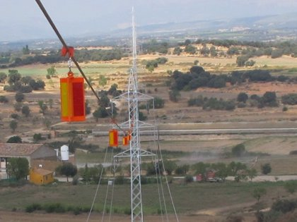 Endesa instala balizas reflectantes en una línea de alta tensión para evitar la colisión de aves