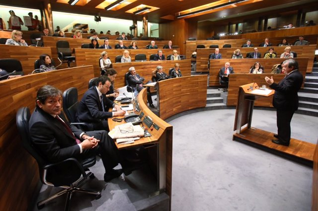 Pleno de la Junta General 20 de diciembre 2013