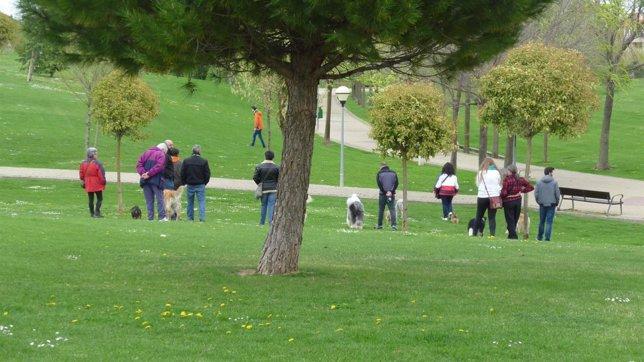 Parque con gente paseando perros
