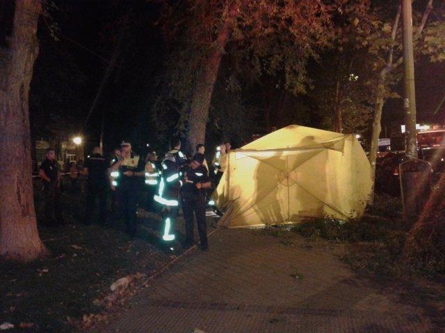 Fallece un hombre al caerle una rama en Santa Eugenia