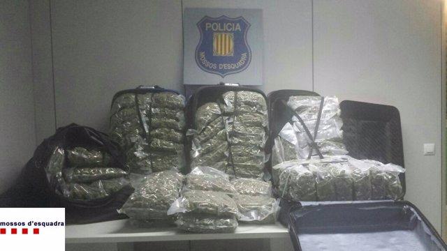 Intervenidos 76 kilos de droga en Tarragona