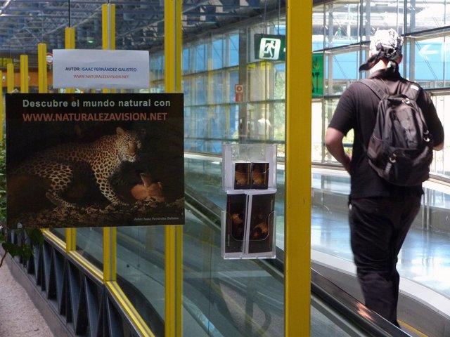 Exposición en Barajas