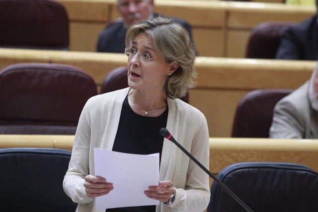Isabel García Tejerina