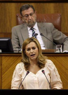 María Jesús Serrano, en el Parlamento