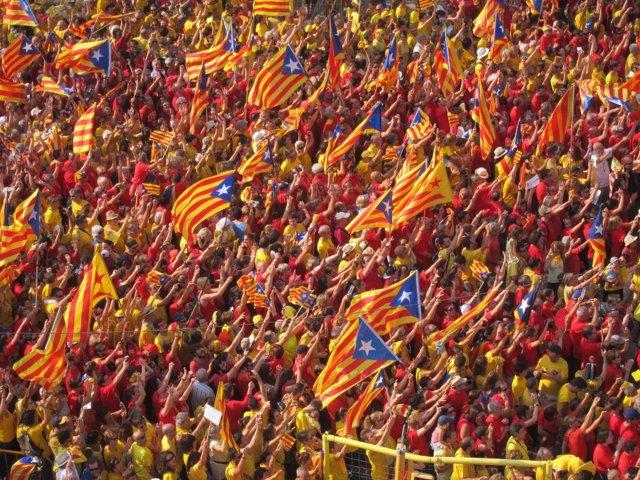 Miles de ciudadanos en la 'V' de la Diada en barcelona