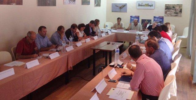 Pleno del Patronato de la Fundación Doñana 21.