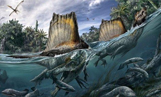 Spinosaurus, el dinosaurio que sabía nadar