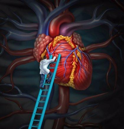 Cinco mitos sobre la enfermedad cardiaca
