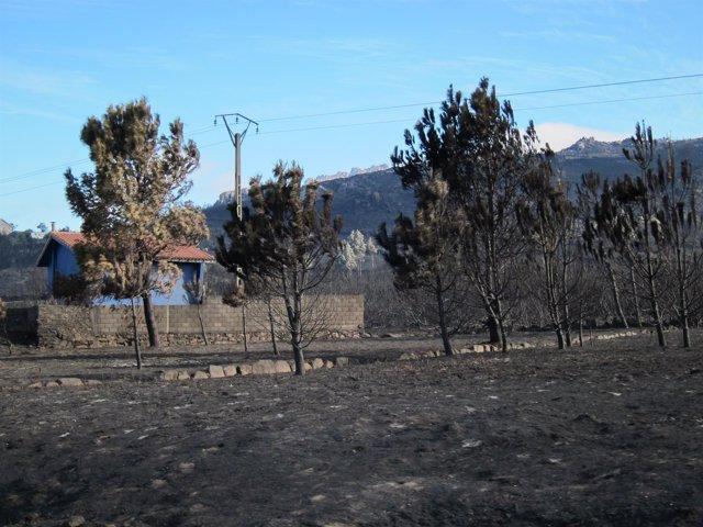 Incendio en Monte Pindo (Carnota)