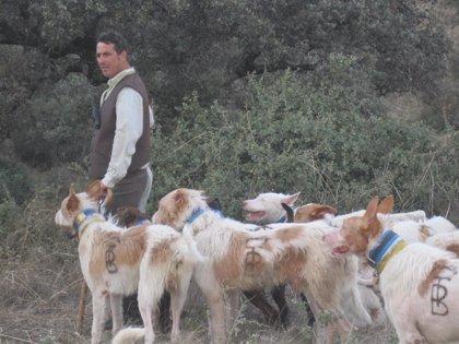 La UE da la razón a Asanda en una queja sobre el transporte de animales para rehalas de perros de caza