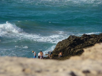 Incautados en Fuerteventura 345,6 kilos de marisco, pescado y pulpo