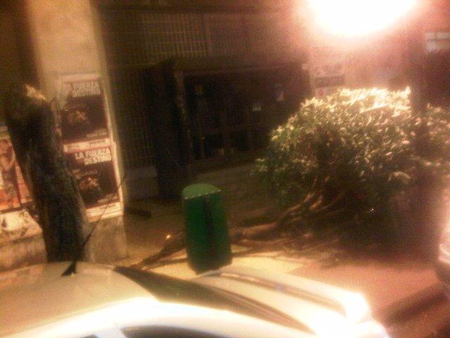 Un árbol caído por la tormenta en la calle Pío XII de Logroño