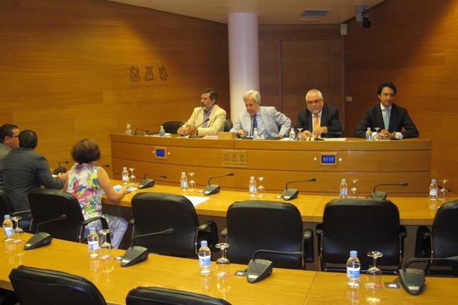 Comisión sobre una reforma del Estatuto de Autonomía