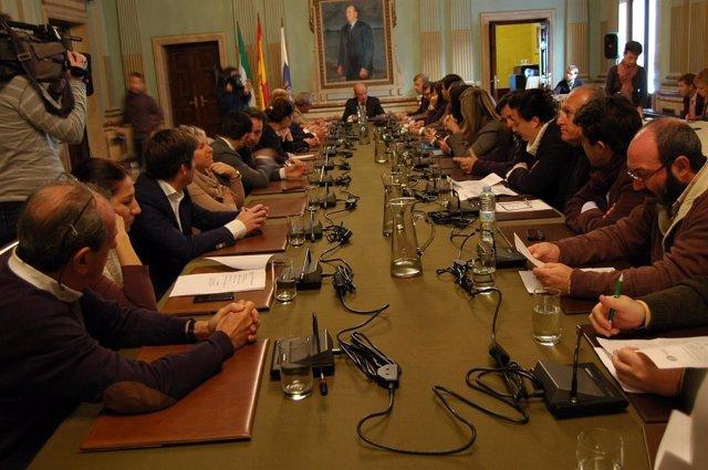 Pleno extraordinario del Ayuntamiento de Huelva.