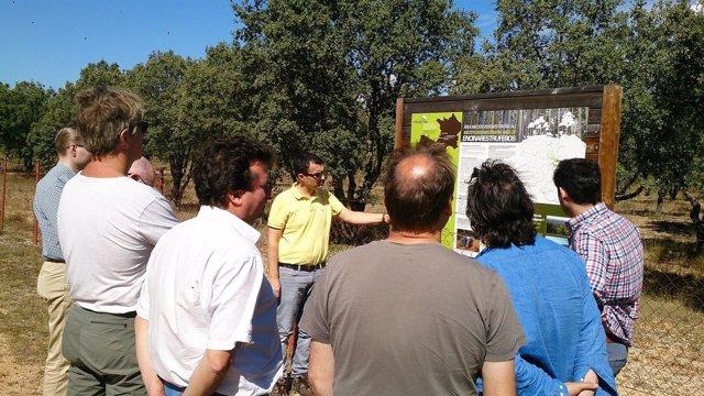 Martínez muestra una de las parcelas de investigación de Micosylva+